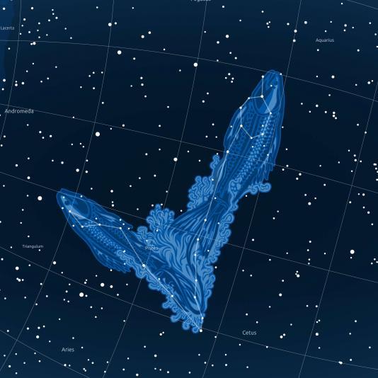 HALAK csillagkép